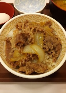 すき家の牛丼.jpg